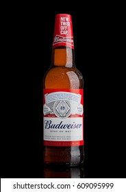 LONDON,UK - MARCH 21, 2017 : Bottle of Budweiser Beer with new twist off cap on black background. An American lager first introduced in 1876.