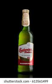 LONDON,UK - MARCH 30, 2017 : Bottle of  Budweiser Budvar beer on black background, one of the highest selling beers in the Czech Republic.