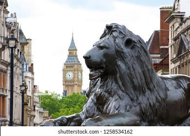 London,U.K.-06 28 2016:The lion statue at the base of the Nelson's Column on Trafalgar square,with Big Ben in the background.