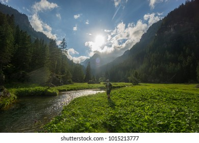 Lone Angler observing a clear spring creek on a warm summer day in the Swiss Alps while fly fishing for wild trout in pristine nature. Sun is up, blue skies