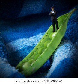 Lone business man in a green pea pod. Miniature man in a tiny boat. Team leader or podcaster.