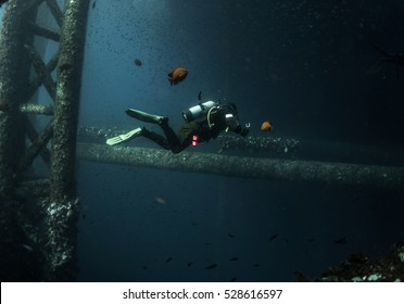 Lone diver on oil rig with Garibaldi