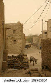 A lone donkey wanders the back alley ways of Timbuktu, in the Sahara Desert of Mali, Africa