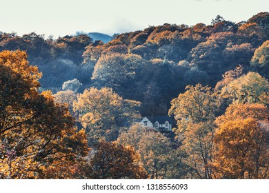 Lone house among colorful autumnal trees in Snowdonia National Park, orth Wales, UK