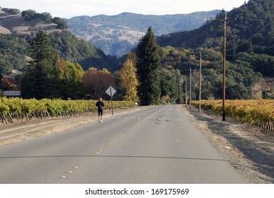 Lone Jogger among the Vineyards near Windsor, CA.