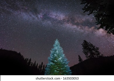 A lone lit pine glows under the arch of the Milky Way in Idaho, USA.