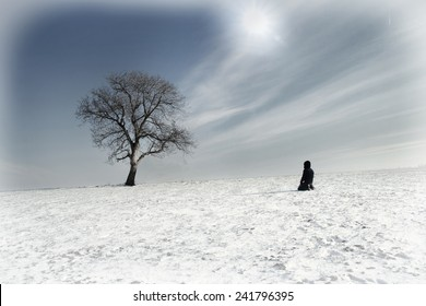 lone man and lonely tree