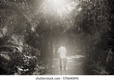 A lone man walking in the forest