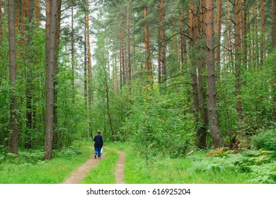 lone man walking slowly through the woods with a package in his hands