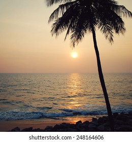 Lone palm tree on the sunset - retro filter. Sunset on the Beach in Varkala, Kerala, India. Peaceful ocean on sunset - retro filter.