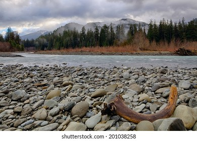 A lone piece of driftwood washed onto the rocks along the Hoh River in Olympic National Park, Washington, USA