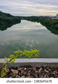 Lone plant on a bridge over a river in Punggol, Singapore