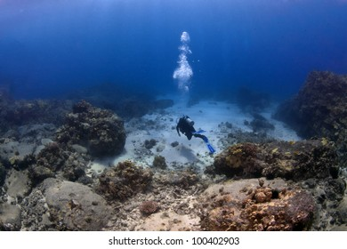 Lone Scuba Diver on a mission in Hawaii