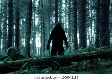 A lone sinister hooded figure looking at the camera standing in a spooky forest in winter. With a dark moody edit.