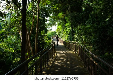 A lone tourist walking the path at Mount Faber Park, a public green space in Singapore