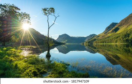 Lone tree and Buttermere lake at Sunrise. Lake District. England