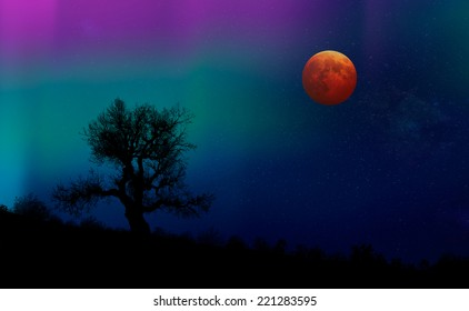 lone tree and lunar eclipse  with aurora