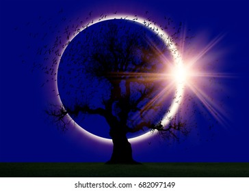 Lone tree with solar eclipse