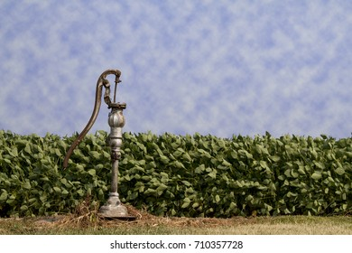 Lone Well Water Hand Pump sitting on the edge of a soybean field.