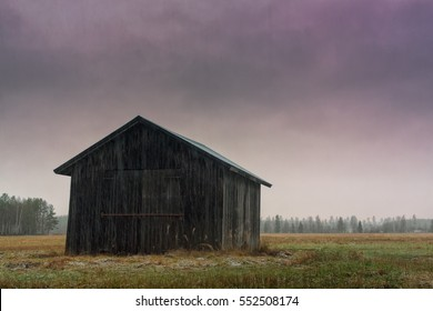 A lonely barn house stands on the wet fields of the Northern Finland on an autumn day. The snow is falling heavily on the fields and on the old building.