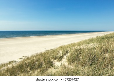 Lonely beach in summer