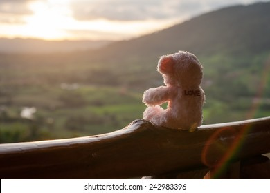 Lonely bear, sitting watching the sunset.