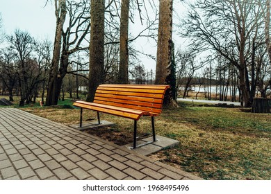 Lonely Bench in the City Park