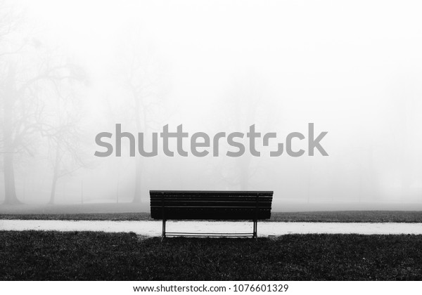 Lonely bench in a Meadow