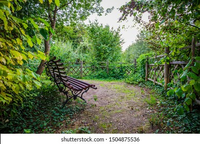 Lonely bench under a tree, in a park in Paris, France