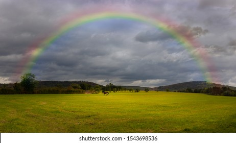 A lonely brown horse is running across a green field. In the sky are heavy dark rain clouds and a beautiful rainbow. Landscape in Germany.