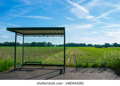 Lonely bus stop in the countryside. Location: Germany, North Rhine-Westphalia, Hoxfeld