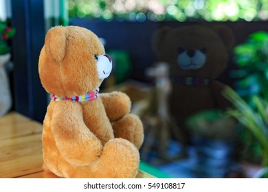 Lonely cute teddy bear looking out the mirror window.