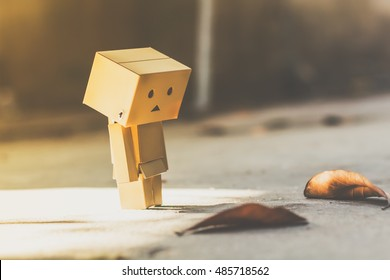Lonely danbo box doll.