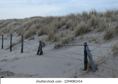 Lonely fence and grass covered sand dunes on the North Sea coast in the Netherlands. Taken near Noordwijk am Zee