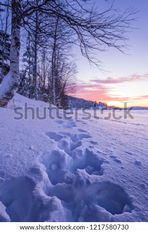 Where logic? Naked in very deep snow