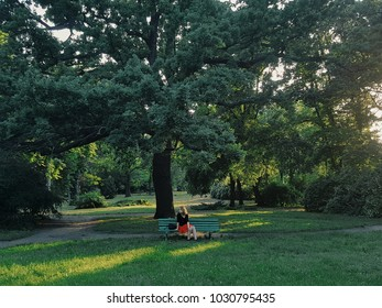 A lonely girl sits alone on a bench in a botanical garden under a tall big tree