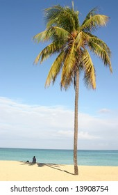 Lonely girl sitting on the white sand near palm