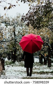 Lonely girl went in the park in raining snow with red and yellow umbrella. When winter comes.
