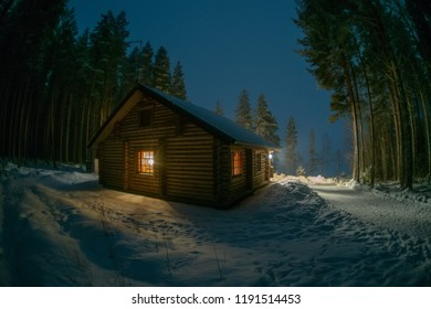A lonely house in a pine forest