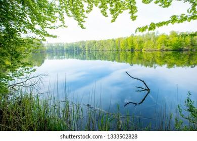 a lonely lake in Brandenburg (Germany) in spring