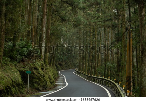 lonely-looking-road-damp-foggy-600w-1638