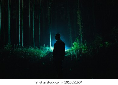 Lonely man silhouette with lantern in the dark scary forest during hazy weather