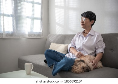 Lonely middle aged mature grey haired asian woman and a dog in the morning, old lady posing at home indoor, single senior retired female sitting on sofa in living room.