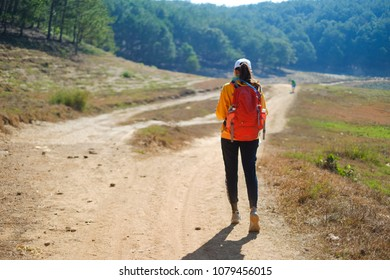 Lonely on the journey. Royalty high quality free stock image of a woman trekking alone in mountain
