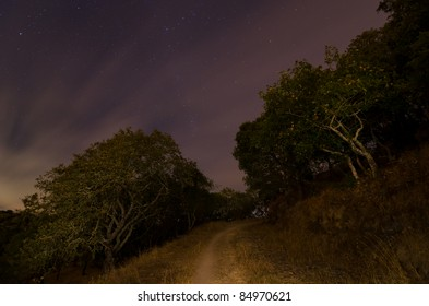 Lonely path with stars and clouds in the sky at night