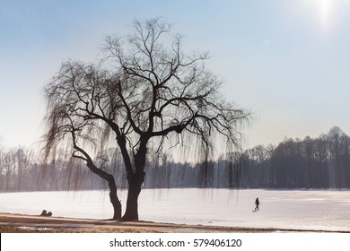 Lonely person walking away alone on frozen  lake/pond in Nowa Huta, Krakow, Poland with copyspace