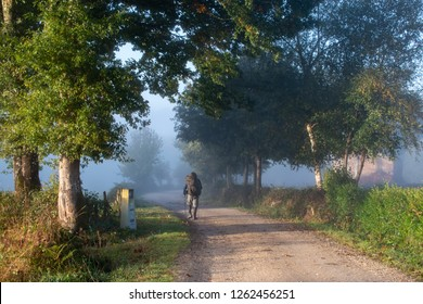 Lonely pilgrim man walking in a magic foggy morning on the historic path of Camino de Santiago, Galicia, Spain.