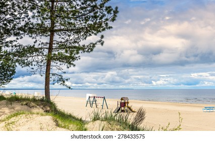 Lonely pine tree at sandy beach of the Baltic Sea in Jurmala - famous resort village in Latvia, Europe