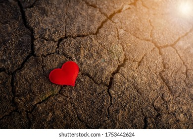 lonely red hearts on cracked soil. - Love and care concept.