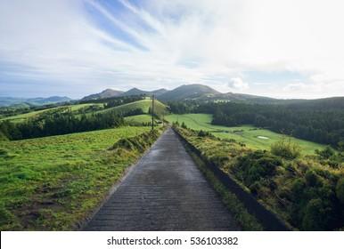 Lonely road. Azores Island Sao Miguel.